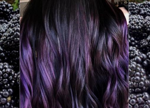 Ежевичный цвет волос – тренд 2018 года